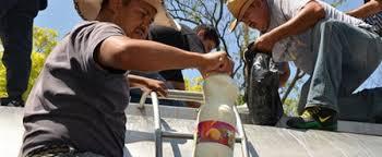 Rechaza Liconsa 120 mil litros de leche por mala calidad
