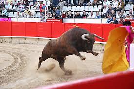 Desafortunada, incongruente y electorera, la iniciativa contra corridas de toros @rdzoswaldo