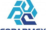5 de cada 10 afiliados a COPARMEX han sido víctimas de algún delito
