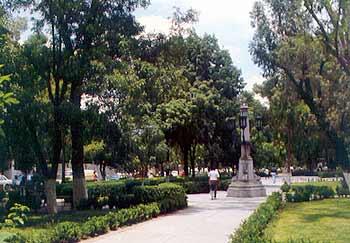Niega @MunicipioAgs haber incurrido en falta ambiental en proyecto Alameda