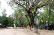 Sin sanción el proyecto de Alameda