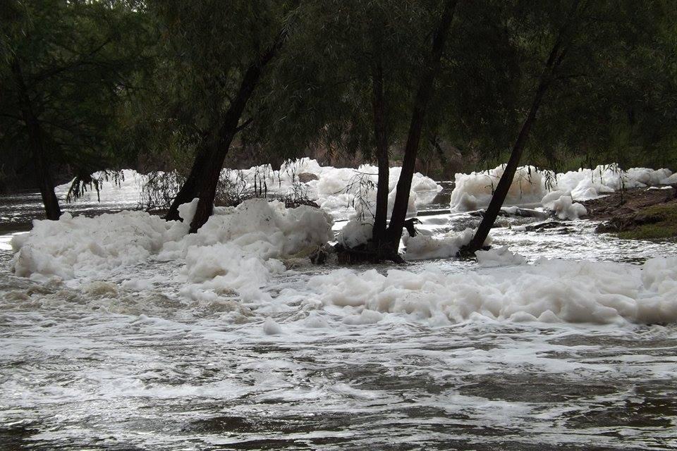El Sabinal es de los parques más contaminados de México