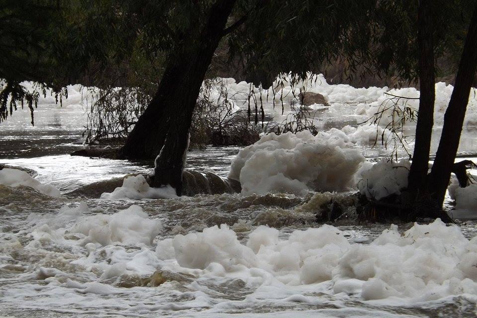 Profepa: Sin riesgo para la salud el agua del SABINAL