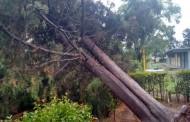En alerta el @MunicipioAgs por lluvias