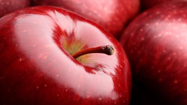 Manzanas contaminadas son chilenas: Sagarpa