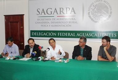 Acaban con el trabajo de escritorio en Sagarpa