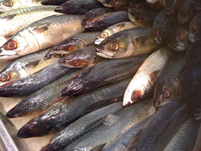 Alerta issea sobre consumo de pescado chino for Pescado chino