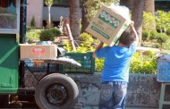 22 mil niños y adolescentes trabajan en Aguascalientes