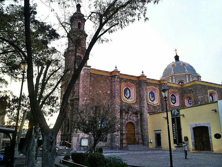 Granizada afecta árboles milenarios en El Encino