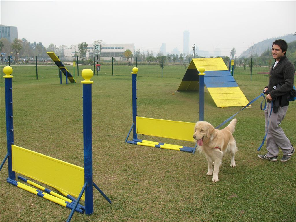 Construirá el @MunicipioAgs parque para mascotas