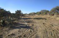 Alertan sobre nueva intentona de ecocidio, Bosque de Cobos en riesgo