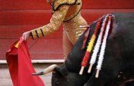 Destapa alchileaguascalientes fraude en serial taurino de San Marcos