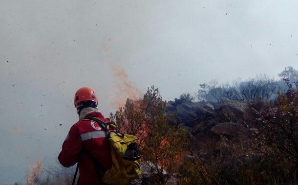 700 hectáres afectadas en El Cerro del Muerto