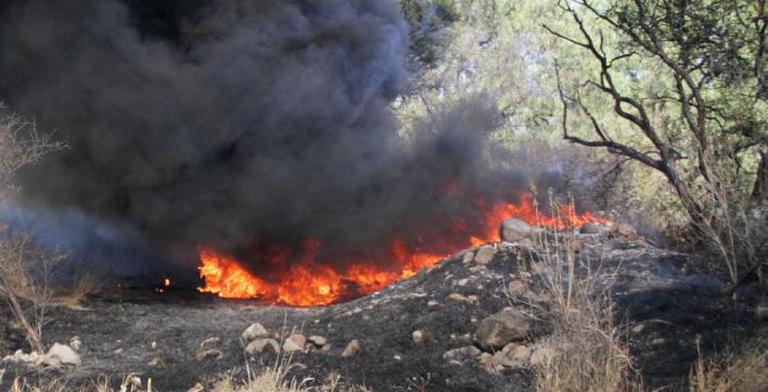 Incendio en la sierra del Laurel arrasó con 15 hectáreas de guayaba