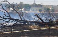 Incendio deberá suspender construcción de plaza Outlet: PROESPA