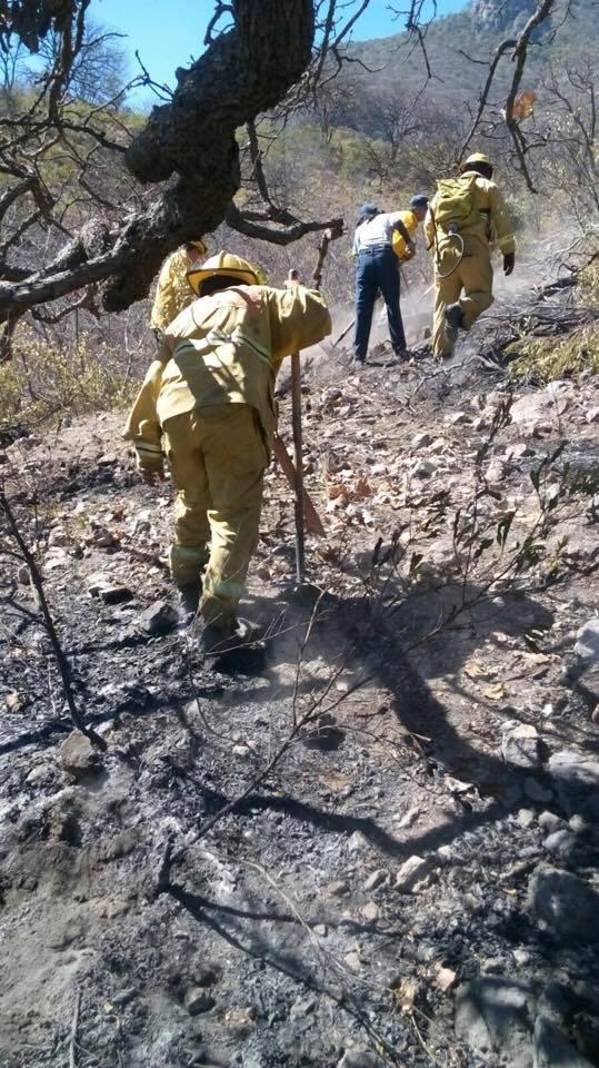 No dejan descansar incendios a cuerpos de emergencia