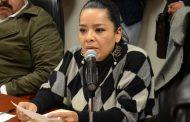 Batean comparecencia de Tere Jiménez y el Secretario de Seguridad Estatal