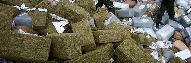 Aumenta consumo de marihuana y metanfetaminas en Aguascalientes