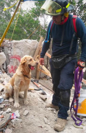 """""""Delta"""", otra heroína que participó en labores de rescate"""
