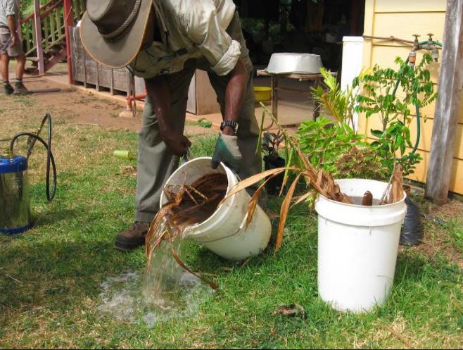 Refuerza ISSEA prevención en contra del dengue, zika y chikungunya