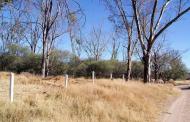 450 mdp costaría el rescate de La Pona: Ambientalista