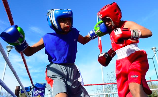 Arranca Liga Estatal de Box Amateur