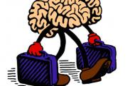 "Denuncian ""fuga de cerebros"" por falta de oportunidades"
