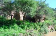 Llevan a consulta el proyecto habitacional en Bosque de Cobos