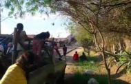 Explota fábrica de pirotecnia en Rincón de Romos