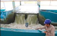 Preservación del agua es doble discurso: Bernal