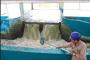 Empresa internacional plantea abastecer de agua tratada a industrias locales