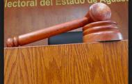 Ordena Tribunal al IEE, revisar queja de SerGay contra el Frente Nacional por la Familia