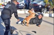 Tendrá Jesús María perros policía