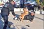 Reprueban policías preventivas en efectividad