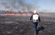 suman casi 600 incendios el presente año