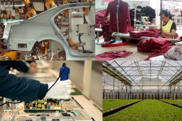 Crece la economía formal en Aguascalientes