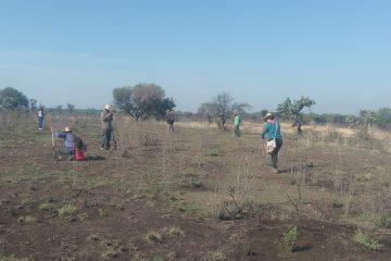 Realizan búsqueda de fosas clandestinas en Aguascalientes