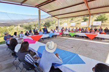 Calvillo y Michoacán disputan producción de Guayaba y Aguacate
