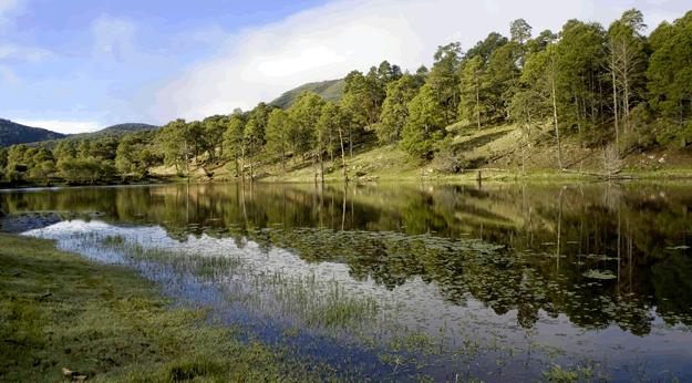 Sin dinero Gobierno para sanear el Río San Pedro