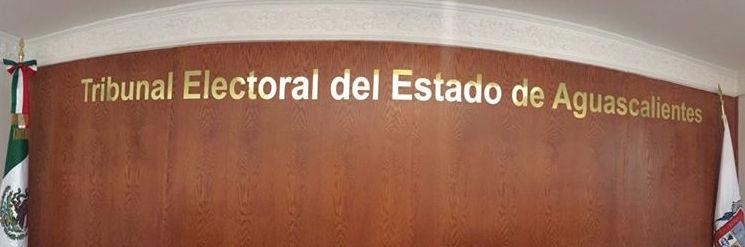 Tumba Tribunal Plurinominales