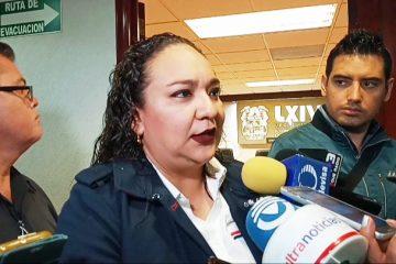 Diputada de MORENA reconoce novatez en implementación de programas federales